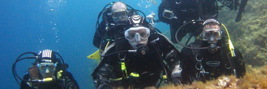 Cirquewirra reef - Header