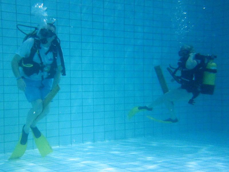 Pool Olympics – Putney BSAC
